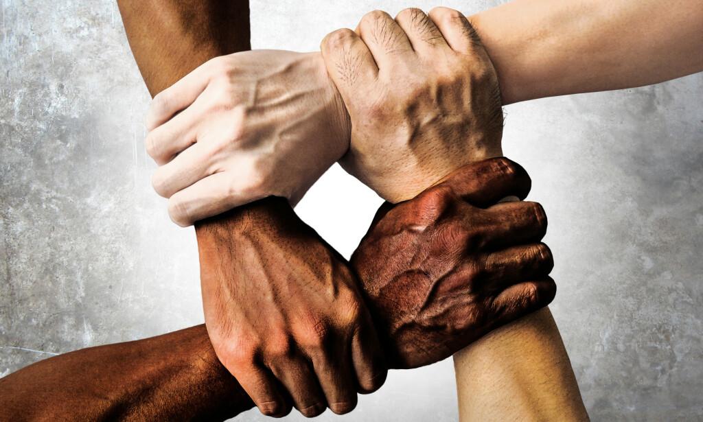 Mitt anliggende var aldri rasisme, men offentlig debatt. Som samfunnsviter og aktivist for en mest mulig sunn politisk kultur, bekymrer det meg at det å sette hverandre i politisk offside er en stadig mer omseggripende taktikk, skriver innsenderen. Foto: Shutterstock / NTB Scanpiix