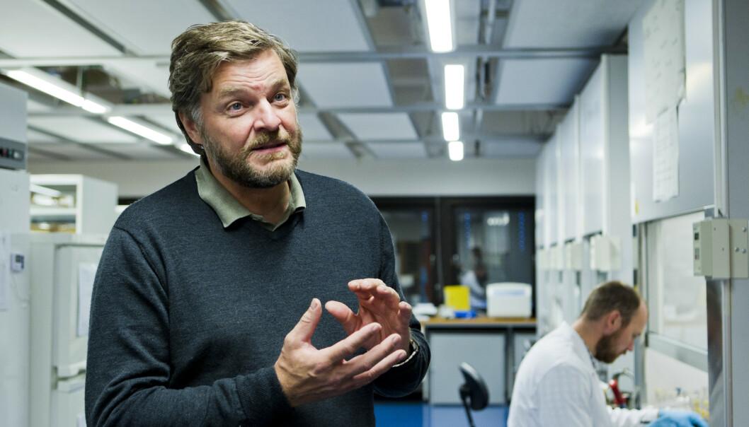 Steinar Madsen er medisinsk fagdirektør i Statens legemiddelverk. Foto: Berit Roald/Scanpix