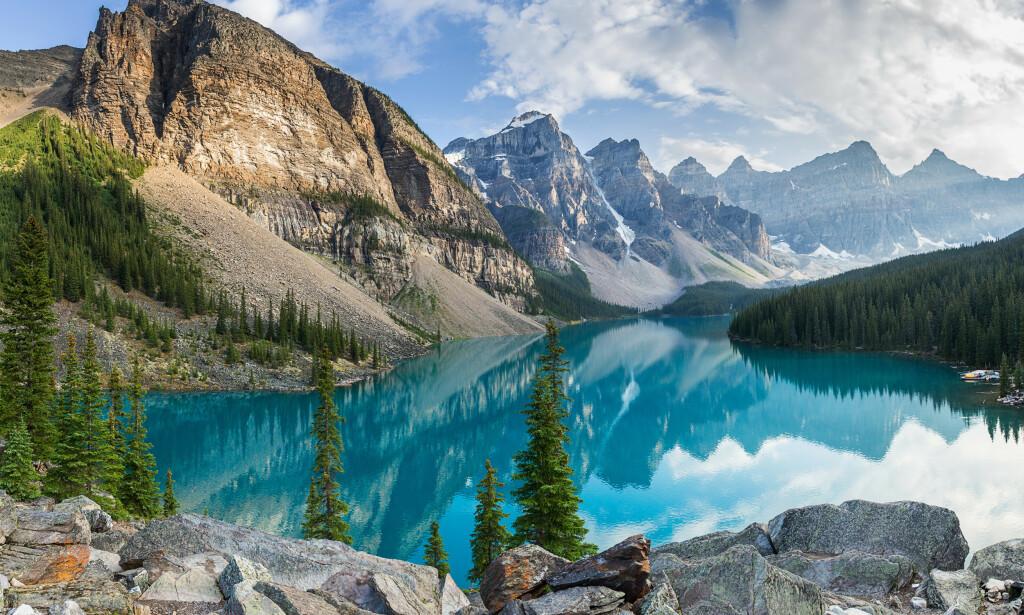 SKATT GJEMT I TI ÅR: I mer enn ti år lå skatten verdt mer enn én million dollar gjemt i den frodige skogsvegetasjonen i Rocky Mountains. Foto: NTB Scanpix