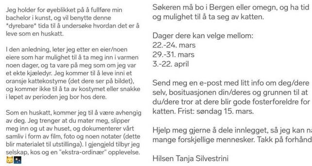 ET KATTELIV: Via en Finn-annonse, har Silvestrini funnet personer som vil gi henne husrom. Foto: Privat