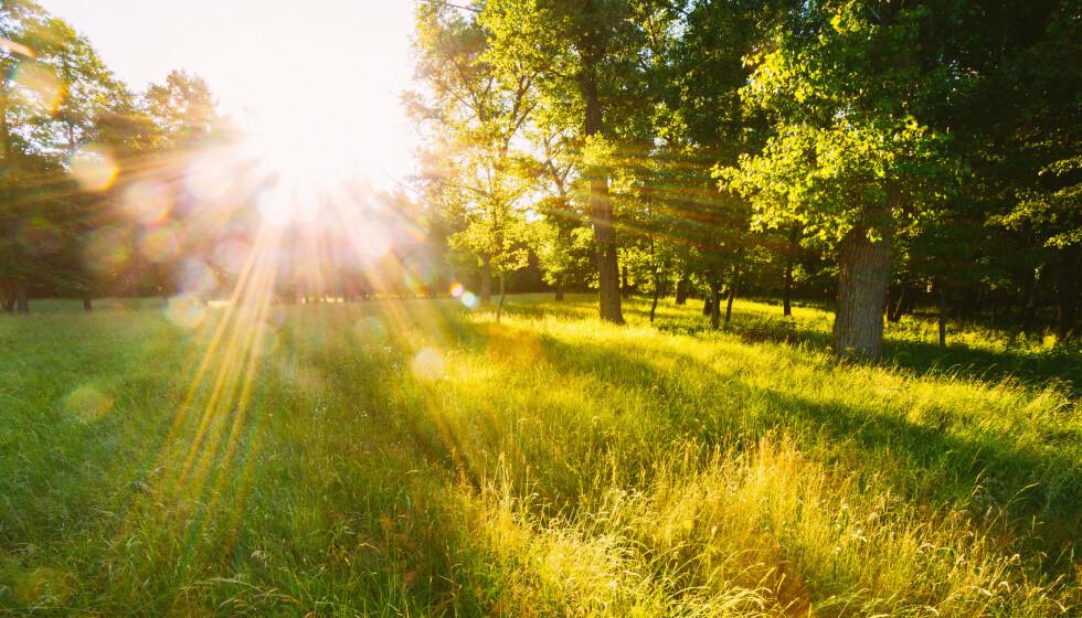 UV-STRÅLER: Bare ved å være utendørs er du utsatt for UV-stråler hele tiden. Foto: NTB Scanpix