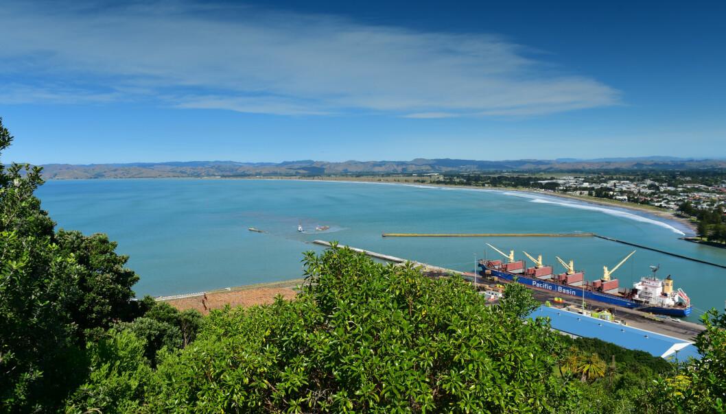 MARERITT: Innbyggerne i Titirangi måtte forholde seg til en nytt «virus», da New Zealand endelig åpnet opp igjen. Foto: Shutterstock