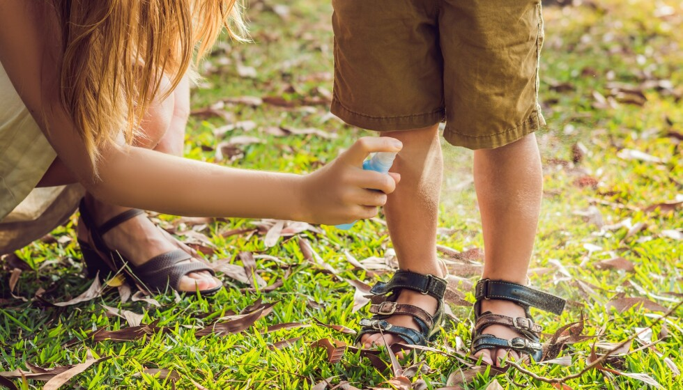 MYGG: Sommer = mygg, men heldigvis finnes det flere måter å beskytte seg på. FOTO: NTB scanpix