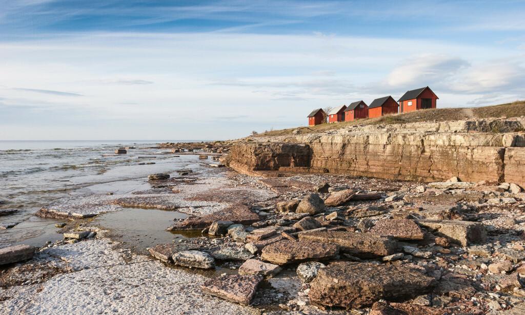 BARE HIT: Øya Gotland øst for Stockholm er det eneste stedet i Sverige nordmenn får reise på ferie til. Foto: Umomos / Shutterstock / NTB Scanpix