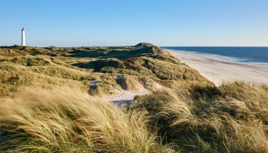 Nytt nå: Charterreiser til Danmark