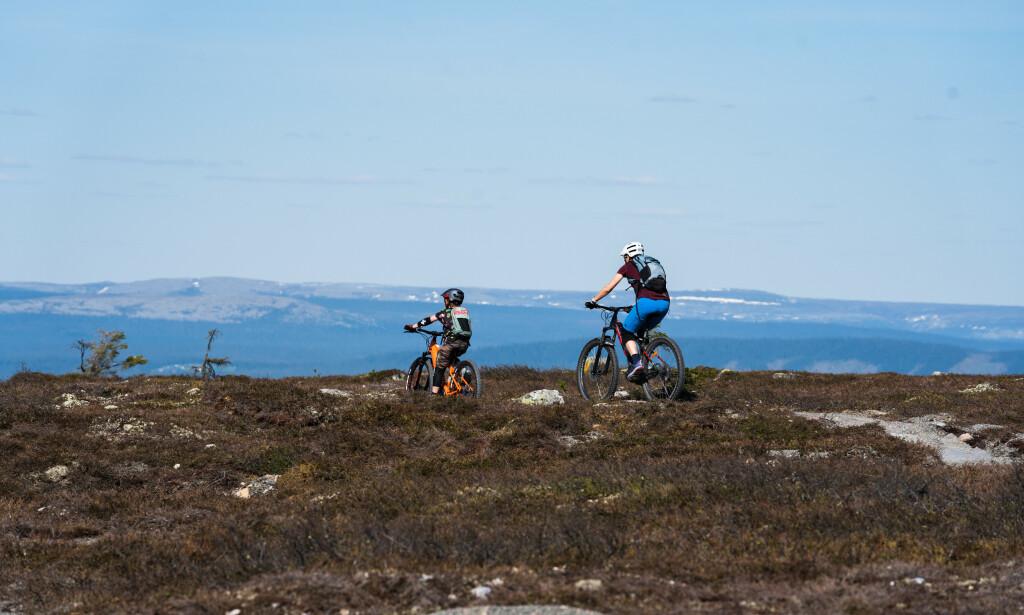 Til fjells: Mange nordmenn vil til fjells i sommer - gjerne for å oppleve fjellsykling. Foto: Destinasjon Trysil