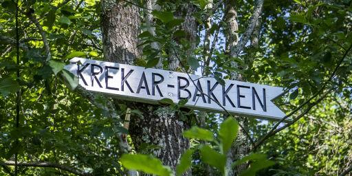 image: Krekar-krangel på Kongsvinger