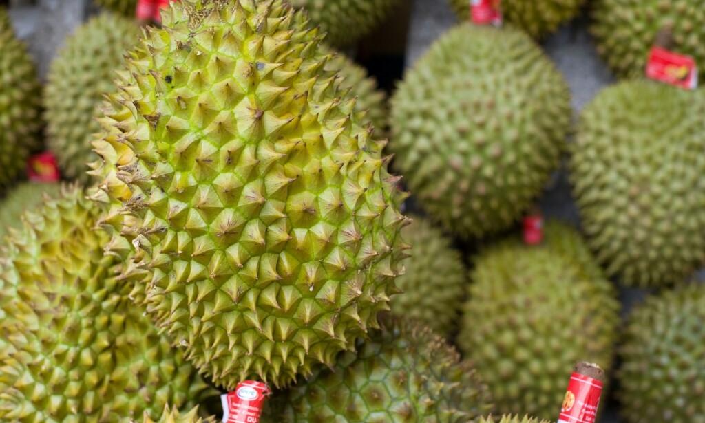 DURIAN: Den illeluktende frukten kommer fra Sørøst-Asia, og er kjent som «Kongen av frukter». Foto: Shutterstock