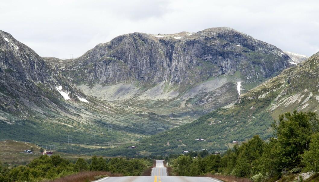 - Det blir travelt på norske veier i sommer, og det øker risikoen for store og små trafikkulykker, sier Therese Nilsen i forsikringsselskapet Fremtind. Foto: Fremtind / NTB scanpix.