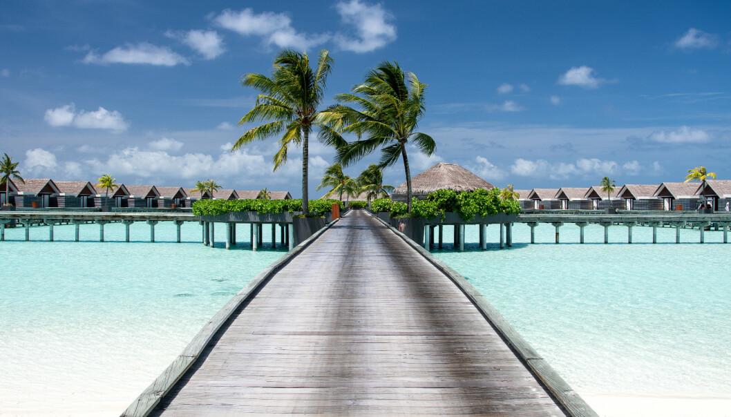 <strong>PERLE:</strong> Den private øya Niyama på Maldivene er blant stedene man kan nyte i full i full ensomhet. Foto: NTB Scanpix
