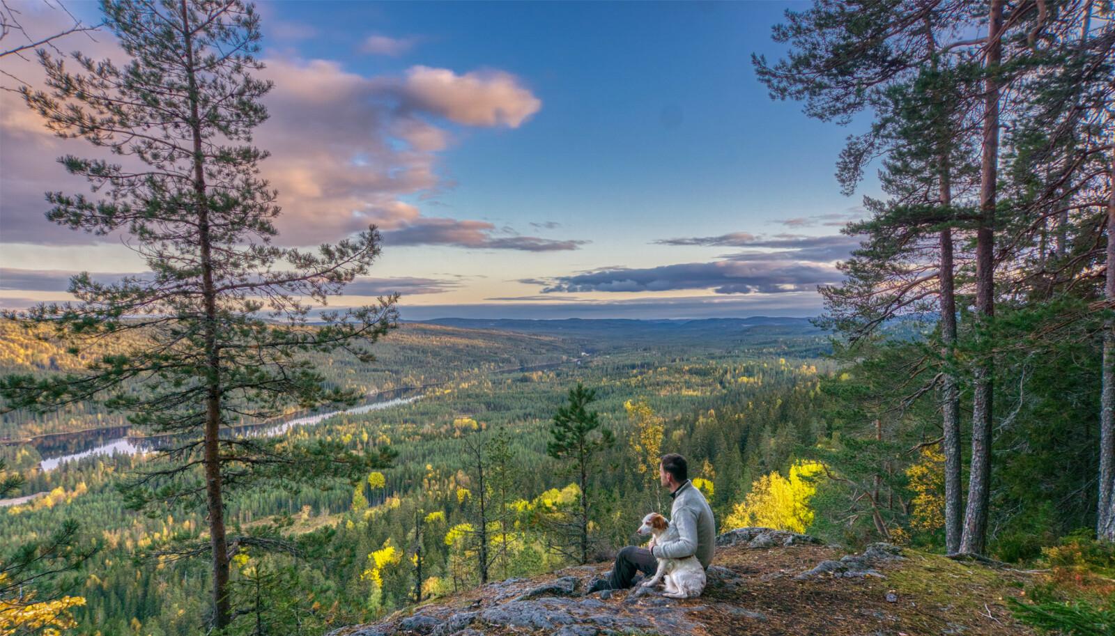 Maliskjæra naturreservat i Gruset statsskog i Grue kommune i Hedmark. Torkel Skoglund og Atcho beundrer utsikten over Rotnavassdraget og Finnskogen. Foto: Statskog