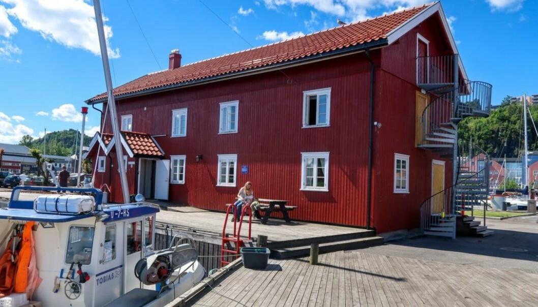 Ødegårdbua nord ved småbåthavna i Holmestrand er fortsatt ledig noen få dager i juli. Her er det sengeplass til åtte, prisen er 1300 kroner døgnet (1100 for medlemmer). Foto: Oslofjordens friluftsråd