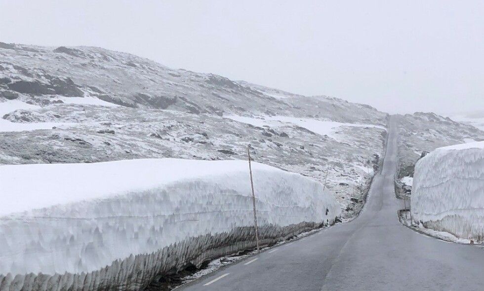 NYSNØ: Dette synet møtte Ove Fortun i morges, da han kjørte over Sognefjellet. Foto: Ove Fortun