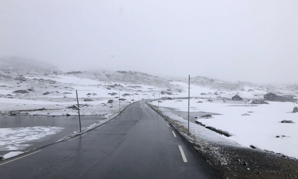 NYSNØ: Ove Fortun er daglig leder ved Sognefjellet Sommarskisenter som ligger ved fylkesveg 55. Han estimerer at det har kommet rundt to centimeter nysnø i natt. Foto: Ove Fortun