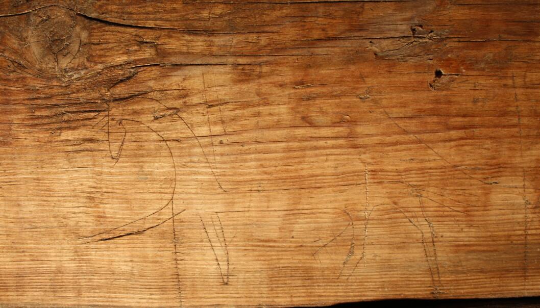 TEGNING: Denne heste-tegningen er blant det som er blitt avdekket. Foto: Kristel Zilmer