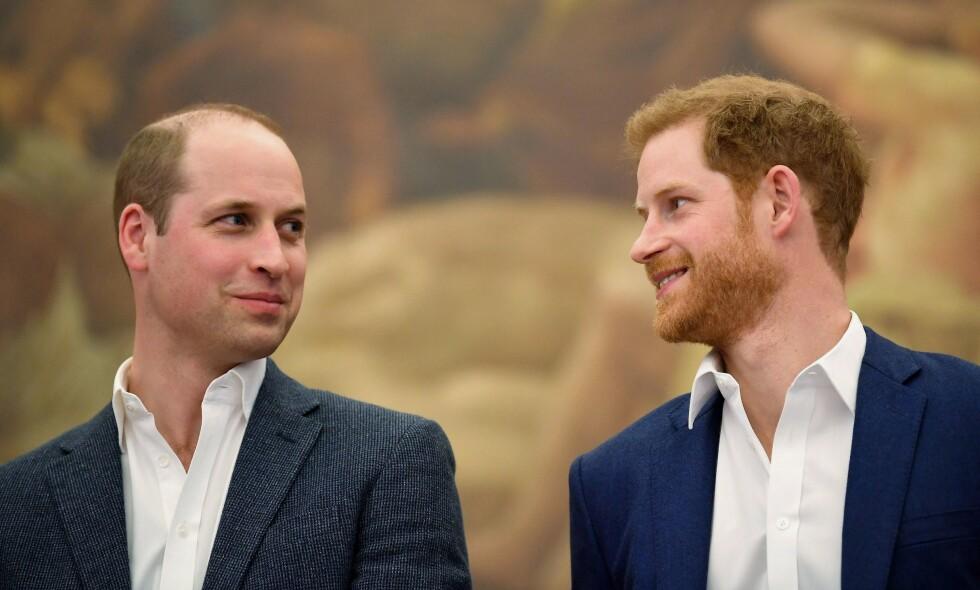 ENIGE: Prins William og prins Harry har blitt enige om hvordan midlene fra mora Dianas minnefond skal fordeles mellom dem. Foto: NTB Scanpix