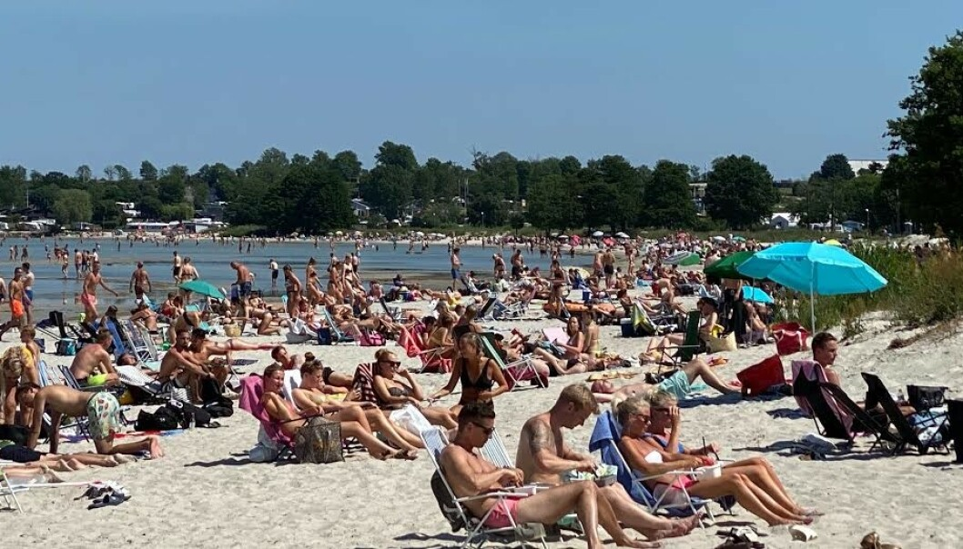 STRANDLIV: Tidligere i juni så det slik ut på Köpingsvik-stranda på Öland. Foto: Leserbilde / Expressen