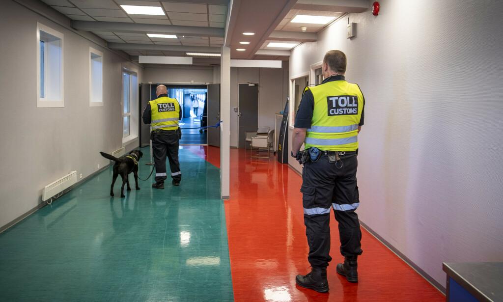 NARKOHUND: Narkotikahunden Max lukter på alle som kommer i land fra Danmark. Foto: Lars Eivind Bones / Dagbladet.