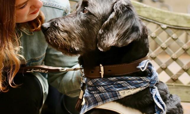 GODE VENNER: Førerhunden Ortis er som regel med når Andrea er ute å går. Ortis har også blitt skadet en av gangene de ble påkjørt. Foto: Christin Lund.