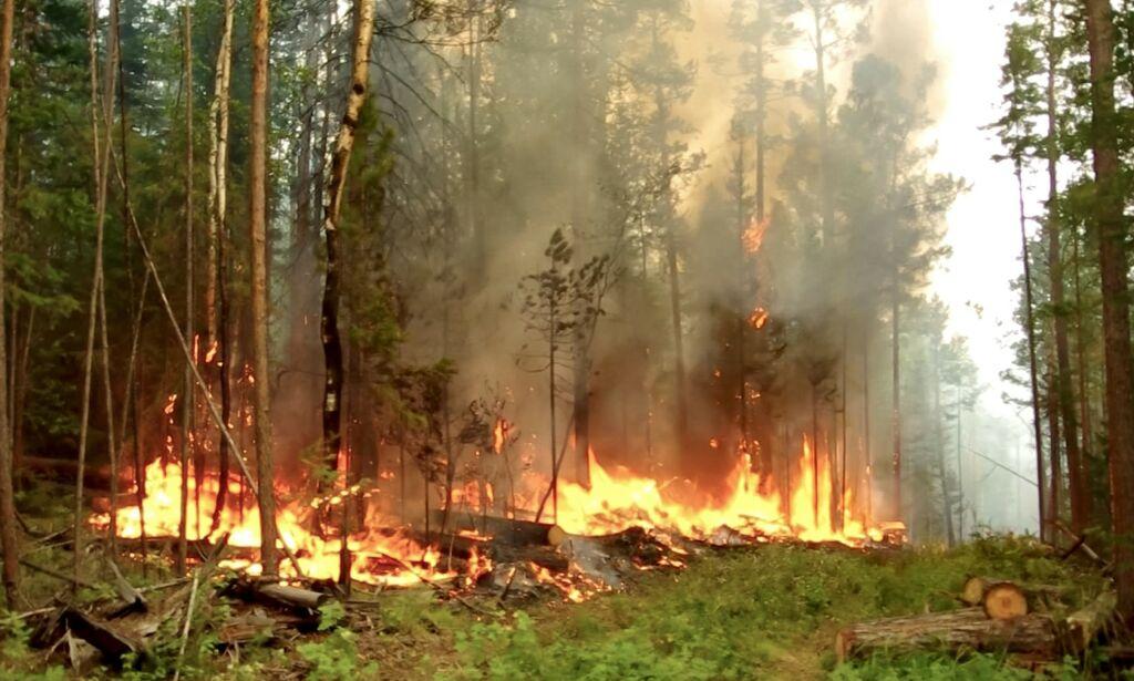 image: Når jorda brenner opp