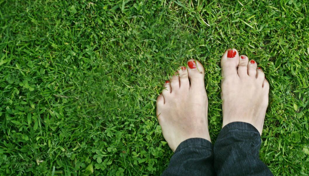 TRENGER PLEIE: Ikke noe er deiligere enn å gå barføtt i gresset. Føttene våre er utsatt for mye trykk og belastning og trenger jevnlig pleie for at vi skal unngå plager. Foto: NTB Scanpix
