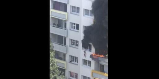 image: Her hopper barna fra flammene
