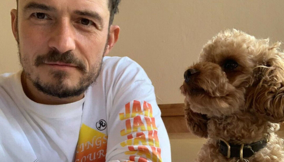 ORLANDO BLOOM: Den britiske skuespilleren fant hunden Mighty død etter stor leteaksjon. FOTO: Instagram