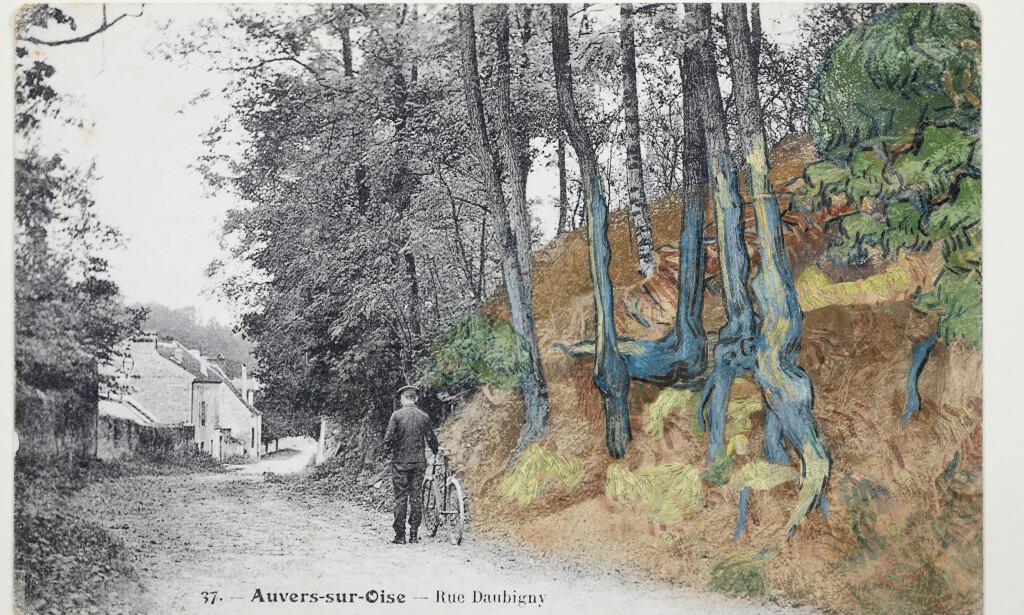 OPPDAGELSEN: Wouter van der Veen sammenliknet et postkort han fant ved en tilfeldighet, med van Goghs maleri. Slik fant han ut hvor kunstverket var malt. Foto: Arthénon