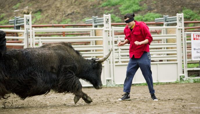 <strong>MANN MOT OKSE:</strong> Johnny Knoxville er ofte å se i ringen mot en okse, noe som tilsynelatende skal være noe av det han liker best. Foto: NTB Scanpix