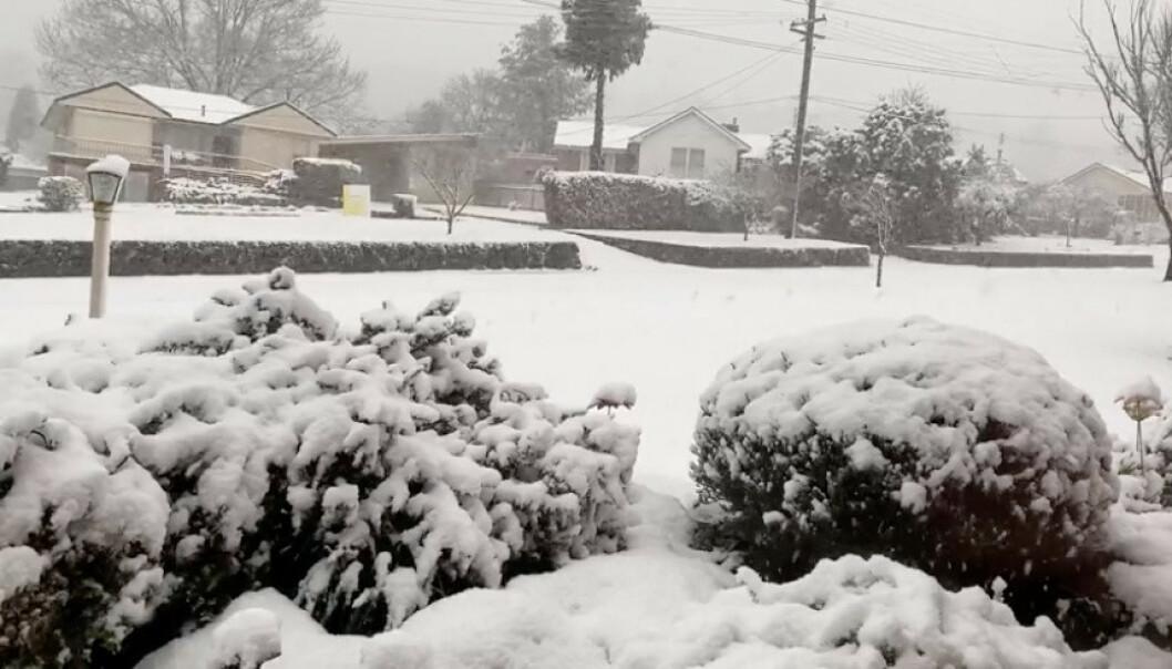 <strong>SNØ DOWN UNDER:</strong> Bildet fra et område i Oberon, New South Wales i Australia viser at snøen har lagt seg. Foto: Tracey Johns / Reuters / Scanpix