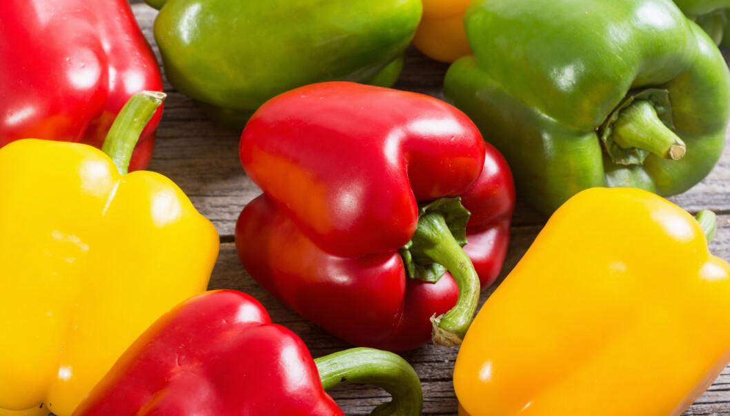 <strong>TILBAKEKALLES:</strong> Coop tilbakekaller et parti med gul og grønn paprika etter funn av for høye verdier av plantevernmidler. Foto: Shutterstock/ NTB scanpix