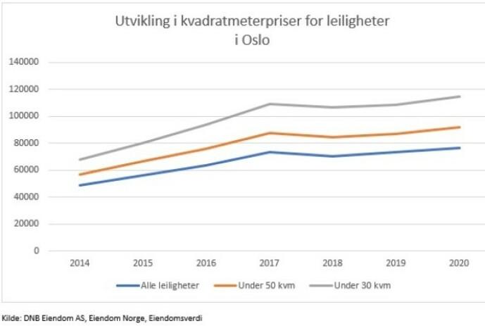 <strong>SMÅTT OG DYRT:</strong> Grafen viser at de minste leilighetene har hatt den kraftigste prisveksten i Oslo de siste årene.