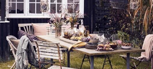 Høstkos i hagen