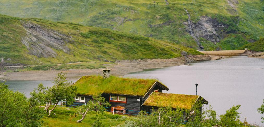Flere ønsker å kjøpe hytte