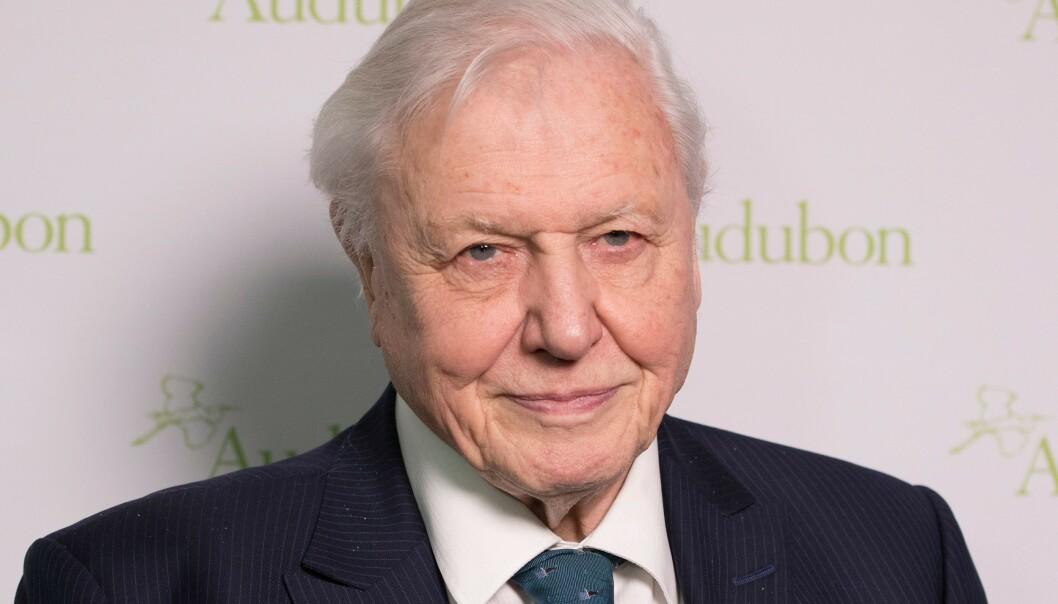 <strong>ADVARERER:</strong> Naturhistorikeren Sir David Attenborough mener verden står overfor en krise. Foto: Shutterstock/NTB Scanpix.