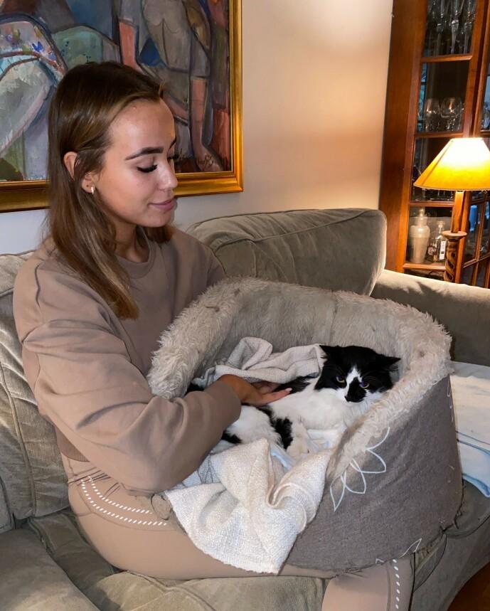 <strong>KRAFTIG SMELL:</strong> Mie Mack Cappelen forteller at hun fikk beskjed fra veterinæren om at Meeko hadde fått seg en kraftig smell som følge av påkjørselen. Foto: Privat
