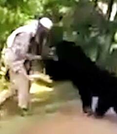 Image: Erter på seg bjørnen
