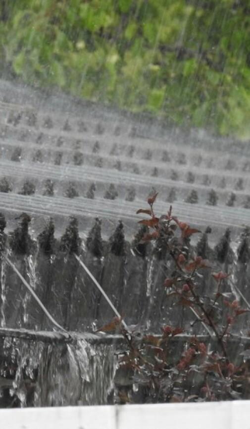 Forsker: Sjekk huset neste gang det styrtregner