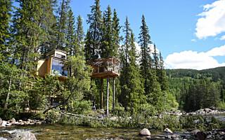 Image: 10 av Norges kuleste tretopphytter