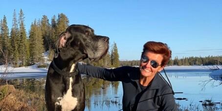 Image: Milliardær-familiens hund funnet død