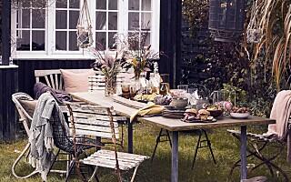 Image: Høstkos i hagen