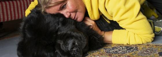 Image: Antons hundemamma: - Kritikken vi fikk gjorde så vondt