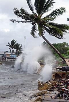 Image: Desperat rop om hjelp