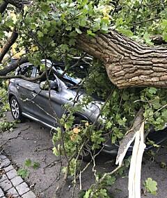 Image: Politiet advarer etter kraftige vindkast: - Sikre alle gjenstander!