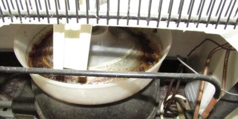 Image: Årsaken til spylukt i boligen