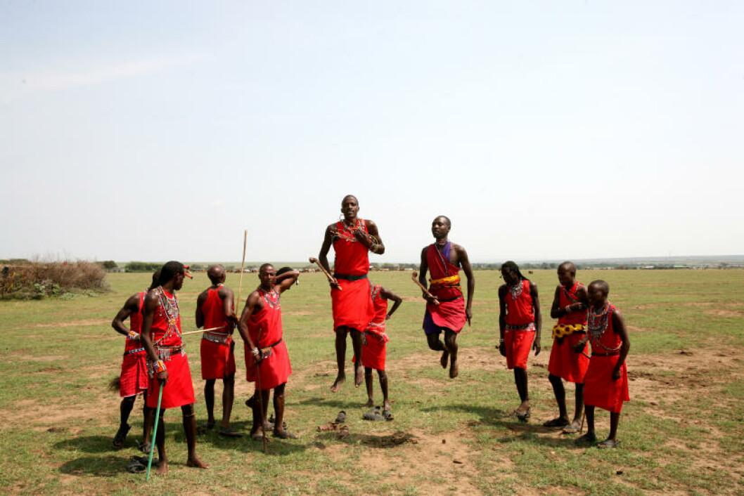 <strong>HØYDEHOPP:</strong>  De lokale masaiene bor i små runde landsbyer, gjerdet inn for å beskytte kveget mot rovdyr. Kommer du på besøk, får du garantert oppleve «adumu» - en dans der mennene lekent komkurrerer om å hoppe høyest.