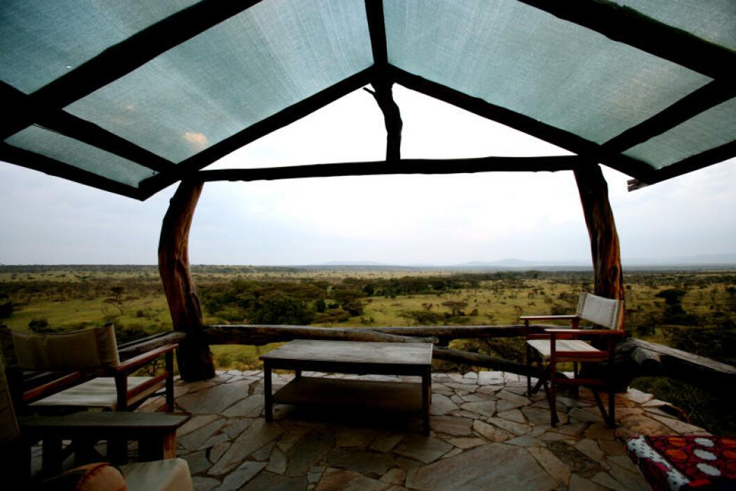 <strong>I ETT MED NATUREN:</strong> Fra de private terrassene kan man i fred og ro studere dyrene.
