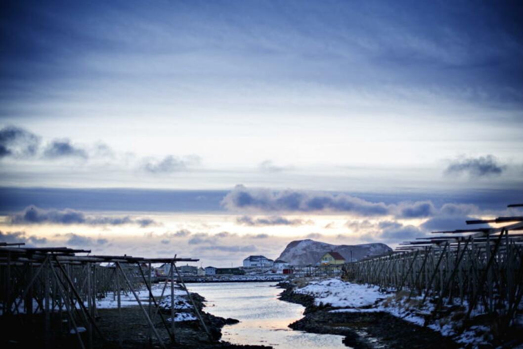 <strong>UT MOT HAVET:</strong> - Lofoten er kjent for fjellene, men Røst er ei øy som er helt flat, sier ordfører Tor Arne Andreassen. Foto: ANITA ARNTZEN