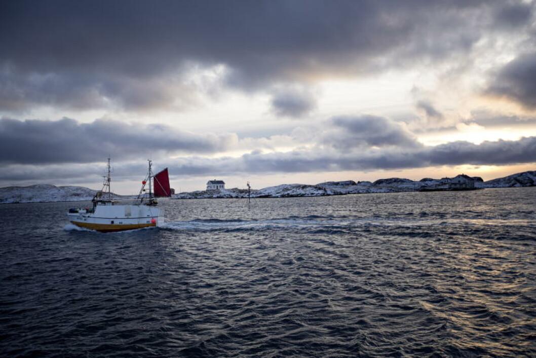<strong>SMÅ AVSTANDER:</strong> Hovedøya i kommunen, Røstlandet, er bare 11 kvadratkilometer. Foto: ANITA ARNTZEN