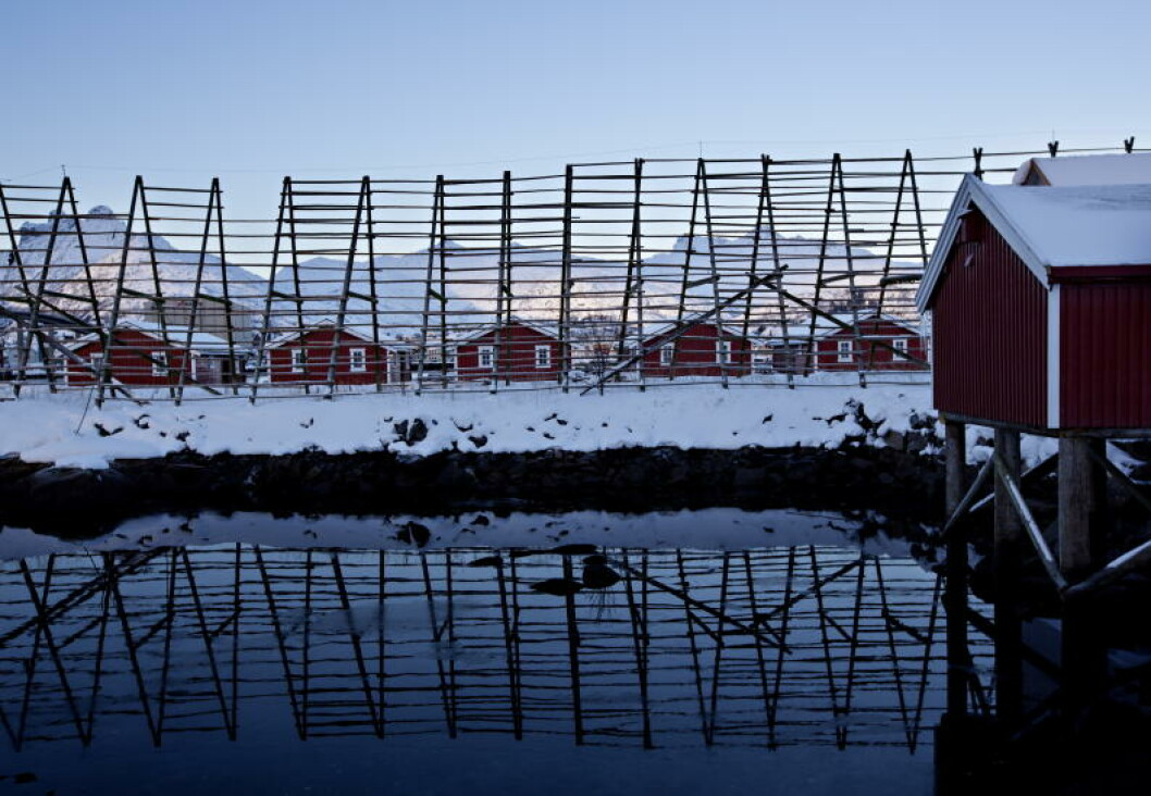 <strong>LOFOTEN:</strong> Svinøya rorbuer. Foto: ANITA ARNTZEN